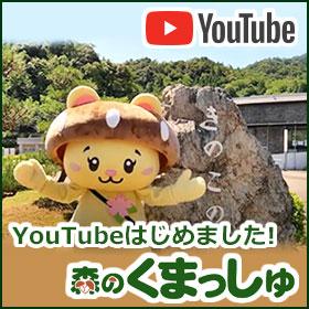 森のくまっしゅYouTubeチャンネル